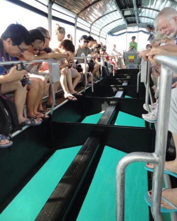 Glass Bottom Boating